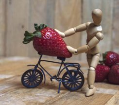 The giant strawberry picker